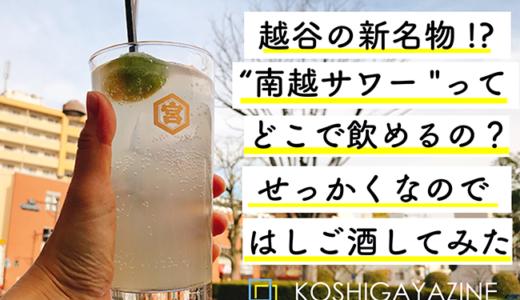 """阿波踊りで生まれた徳島との縁。各店の個性が楽しい""""南越サワー""""を飲み歩いてみた"""